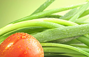 Fresh Produce Prints - Tomato and green onions Print by Blink Images