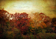 Autumn Trees Prints - Treetops Print by Jessica Jenney