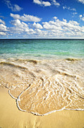 Ocean Landscape Metal Prints - Tropical beach  Metal Print by Elena Elisseeva