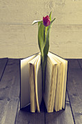 Tulip Flower Framed Prints - Tulip In A Book Framed Print by Joana Kruse