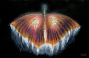 Pastel  Drawings Paintings - UFObutterlyorange by Michelle Cavanaugh-Wilson