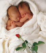 Red Robe Prints - Untitled Print by Anne Geddes