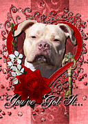 Bullie Prints - Valentines - Key to My Heart Pitbull Print by Renae Frankz