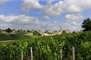 Vinyard Framed Prints - Village and vineyard of Saint-Emilion. Gironde. France Framed Print by Bernard Jaubert