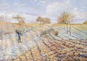 Snow On Field Posters - White Frost Poster by Camille Pissarro