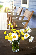 White Daisy Prints - Wildflowers bouquet at cottage Print by Elena Elisseeva