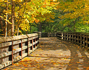 Wildwood Park Prints - Wildwood Boardwalk Print by Jack Schultz