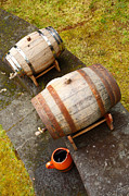 Winemaking Photos - Wine barrels by Gaspar Avila