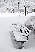 Benches Photo Prints - Winter park Print by Elena Elisseeva