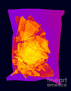 Ted Kinsman - X-ray Of A Bag Of Corn Chips