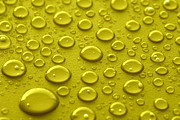 Water Drops Posters - Yellow water drops Poster by Blink Images