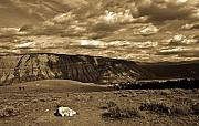 Yellowstone Sky Print by Patrick  Flynn