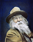 Walt Whitman Metal Prints - Walt Whitman (1819-1892) Metal Print by Granger