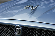 2009 Prints - 2009 Jaguar Hood Ornament Print by Jill Reger