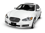 2009 Prints - 2009 Jaguar XF Luxury Car Print by Oleksiy Maksymenko