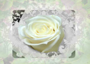 Natures Flower Garden Mixed Media Posters - Wedding Rose Collection  Poster by Debra     Vatalaro