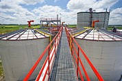 Fermentation Posters - Corn Ethanol Processing Plant Poster by David Nunuk