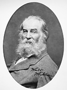 Walt Whitman (1819-1892) Print by Granger