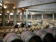 Cellar Photos - 2nd year cellar at Ch. Lafite by Rodger Lindquist