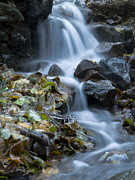 Sweating Photo Prints -  Waterfall Print by Odon Czintos
