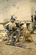 Bonding Metal Prints - A Dog Handler And His Military Working Metal Print by Stocktrek Images