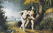 Adam Framed Prints - Adam And Eve Framed Print by Granger