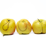 Damage Prints - Apples Print by Bernard Jaubert