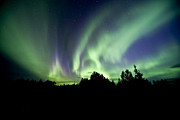 Alberta Landscape Photos - Aurora Borealis Near Drayton Valley by Zoltan Kenwell