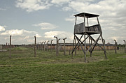 Concentration Prints - Auschwitz Birkenau concentration camp. Print by Fernando Barozza