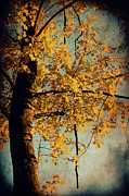 Golden October Posters - Autumn Poster by Angela Doelling AD DESIGN Photo and PhotoArt
