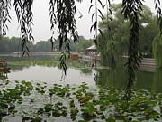 Alfred Ng - Autumn Lake