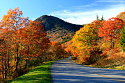 Asheville Prints - Autumn Road Print by Gary Bydlo