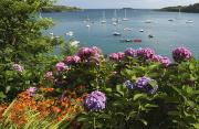 Water Vessels Prints - Bay Beside Glandore Village In West Print by Trish Punch