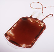 Blood Art - Blood Bag by Cristina Pedrazzini