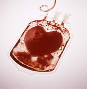 Blood Art - Blood Donation by Cristina Pedrazzini