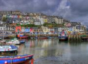 Quay Wall Framed Prints - Brixham Harbour Framed Print by Mike Lester