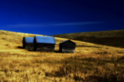 Shed Metal Prints - 3 Cabins Metal Print by Detlef Klahm