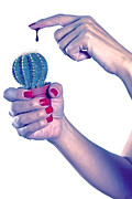 Bloody Photos - Cactus by Joana Kruse