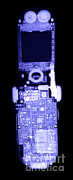 Digital Camera Prints - Cell Phone Print by Ted Kinsman