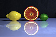 Citrus Fruit Framed Prints - Citrus Fruits Framed Print by Joana Kruse