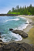 British Columbia Photo Metal Prints - Coast of Pacific ocean in Canada Metal Print by Elena Elisseeva