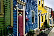 Colours Framed Prints - Colorful houses in St. Johns Framed Print by Elena Elisseeva