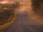 Jim Wright Art - Country road by Jim Wright