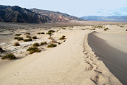 Death Valley National Park Mesquite Flat Sand Dunes Print by Eva Kaufman
