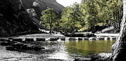 Stepping Stones Prints - Dovedale Stepping Stones Print by Darren Burroughs
