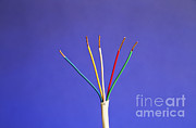 Electrical Wiring Prints - Electrical Cable Print by Photo Researchers, Inc.
