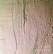 NASA / Science Source - Enceladus Surface