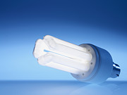 Light Bulbs Prints - Energy-saving Light Bulb Print by Tek Image