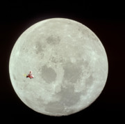 Dog Prints Photos - Fifi goes to the moon by Michael Ledray