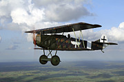 Fokker Dvii Framed Prints - Fokker D.vii World War I Replica Framed Print by Daniel Karlsson